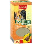 Maisto papildas APOTHEKE Psyllium su ananasu 100g