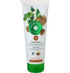 GREEN FEELS šampūnas su natūraliu alaus mielių ekstraktu ir graikinių riešutų aliejumi 250ml