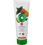 GREEN FEELS šampūnas su natūraliais dilgėlių ir mangų ekstraktais 250ml