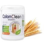 Maisto papildas Silvaslim Colon Clean 260g