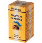 Maisto papildas Propolio kapsulės N40