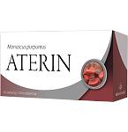 Maisto papildas Aterin tabletės N30