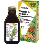 Maisto papildas Floradix Vitamin - B complex 250ml