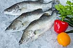 Mokslininkai perspėjo: kartu su žuvimi - porcija antibiotikų