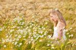 Sveikatos teikiančios laukinės žolės