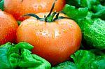 3 dažniausiai ant mūsų stalo esančios daržovės turi neįtikėtinos naudos odos sveikatai ir grožiui