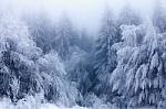 Šalti ir ramūs orai lemia padidėjusią oro taršą