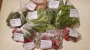 Ištyrė nitratų kiekį parduotuvės ir namuose augintose daržovėse – atsakymai nustebino