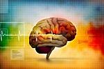 Neurologai: sergančiųjų autizmu smegenyse – šio to per daug (Video)