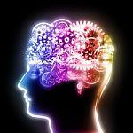 Tyrimas rodo, kaip smegenų neuronai pertvarko savo DNR, kaip tai gali lemti Alzheimerio ligą, kurią gydyti galėtų vaistai nuo ŽIV