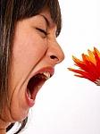 Žinoti sveika...perspėjimas žiedadulkėms jautriems asmenims