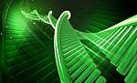 Reta genetinė liga šeimai neatima gyvenimo džiaugsmo