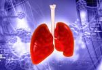 Pneumokokine infekcija dažniau serga vaikai ir vyresnio amžiaus asmenys