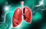 Gydytoja pulmonologė įvardija tuberkuliozės simptomus