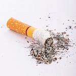 Dieną be tabako – gėle vietoj cigaretės
