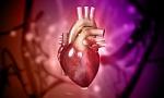 Gegužės 7-oji − Europos širdies nepakankamumo diena