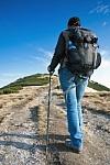 Žygiavimas pėsčiomis – geriausia diabeto ir kitų ligų prevencija